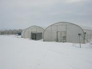 Монтаж и проектирование  пленочных фермерских теплиц от 200м2 до 10 00